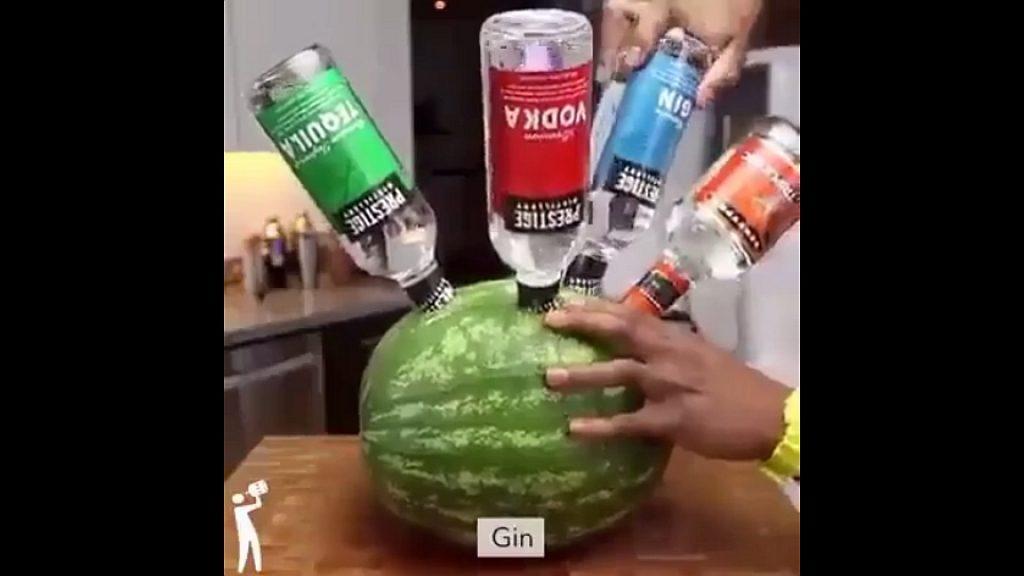 schnaps wassermelone rezept